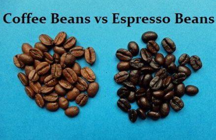 Espresso Beans vs Coffee Beans – Detailed Comparision