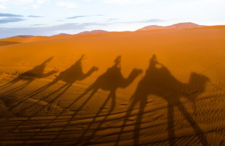 Important Facts About Sahara Desert – 10 Unknown Facts